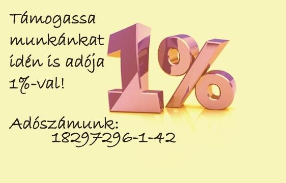 1%-kis